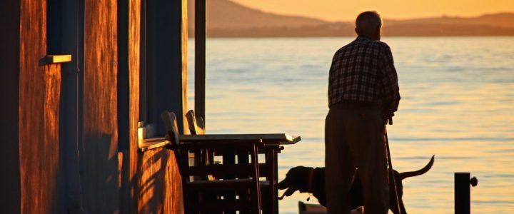Welche Haustiere eignen sich für Rentner?